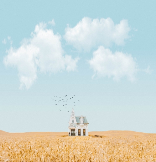 house in the middle of crop field